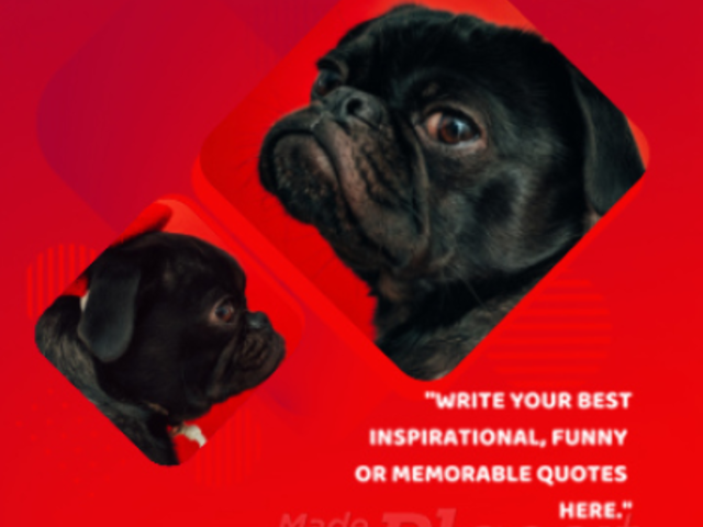 Instagram Video Maker for an Inspirational Quote Video with Fun Animations 860