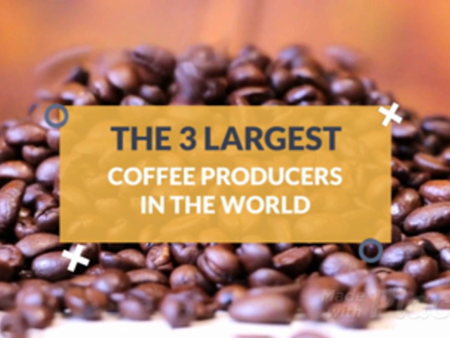 Content Teaser Slideshow Maker for a Coffee Facts Video 1058