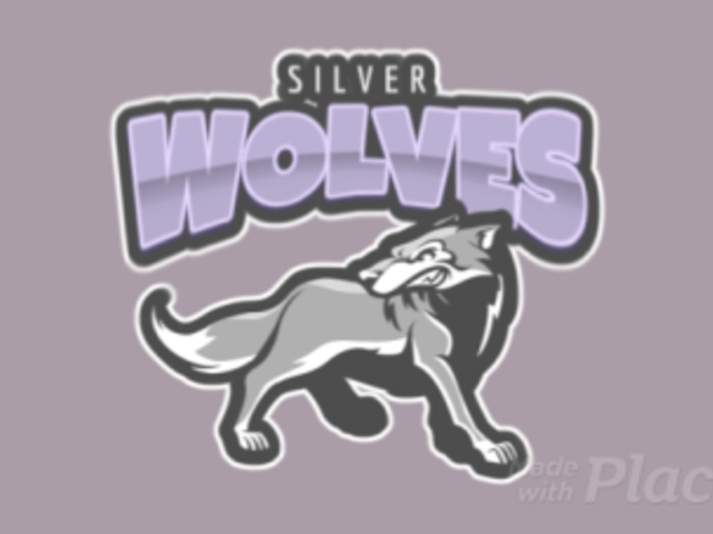 Animated Sports Logo Maker with a Silver Wolf Illustration 120l-2862