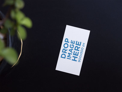 Business Card Template Lying on a Black Surface Near a Plant a14996